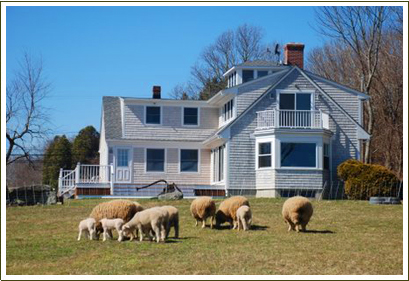 Farm Stays at the Stonehaven Family Farm